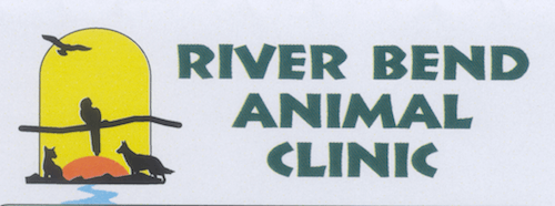 River Bend Animal Clinic